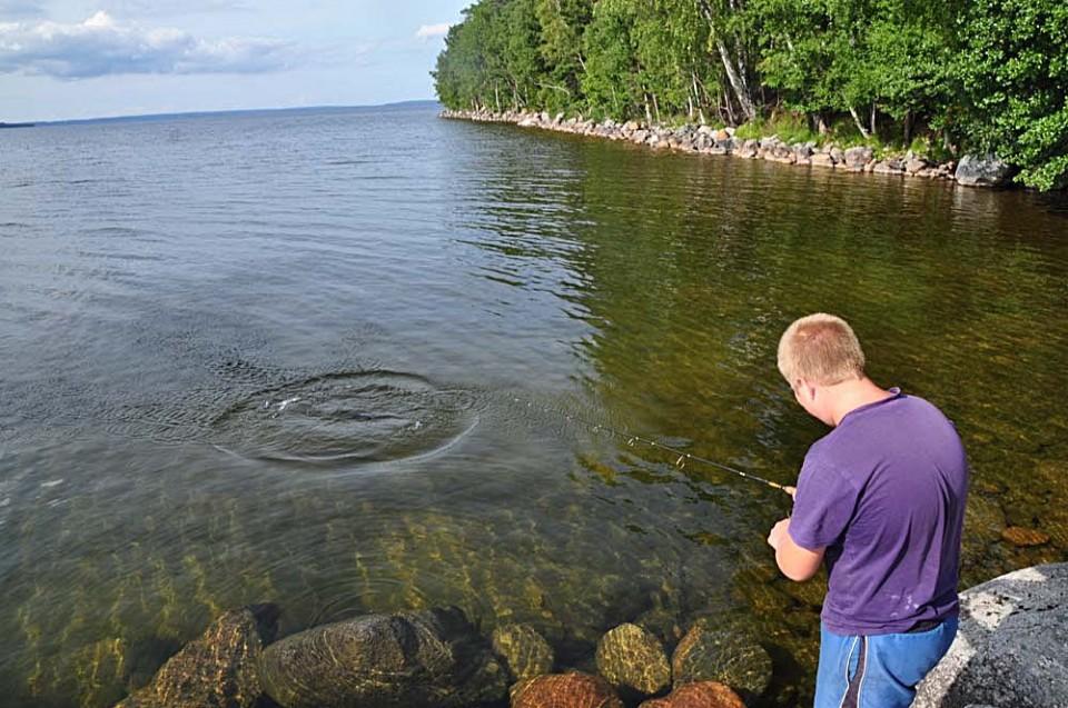 Pojke fiskar med kastspö